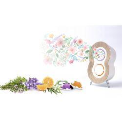 pack aromacare aromathérapie