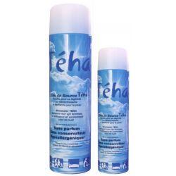 Atomiseur d'eau de source Teha