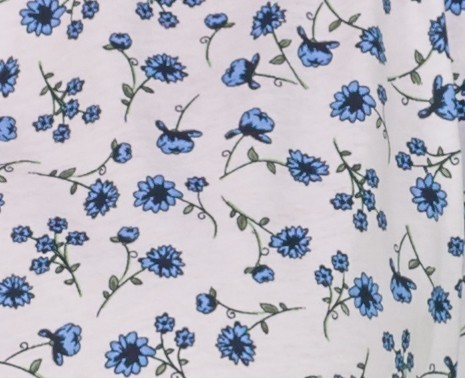 Imprimés fleurs bleues